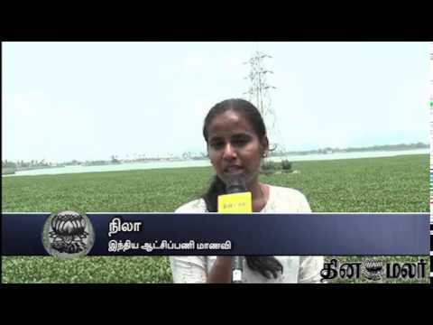Nature Lovers Worried in Kovai - Dinamalar May 11th 2015 Tamil Video News