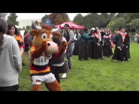 Waikato Rugby Flash Mob