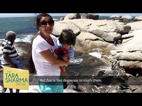 Zen & Tara's visit to Capetown - Episode 10 - Season 1