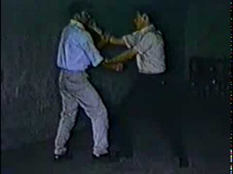 Bruce Lee Training Techniques Image 1
