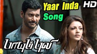 Paayum Puli Tamil Movie | Scenes | Yaar intha Muyalkutty Song | Vishal | Soori | Kajal Agarwal