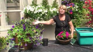 Hanging Baskets - Easy (Coco)