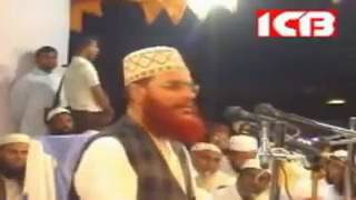 Allama Saydee's comments about BDR Tragedy in Pilkhana