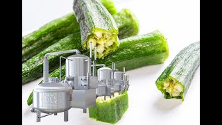 198 Fruits And Vegetables Chips Vacuum Frying Machine