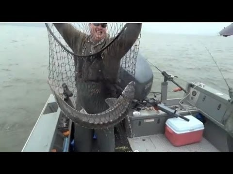 Sturgeon Fishing | Columbia River | Astoria, Oregon