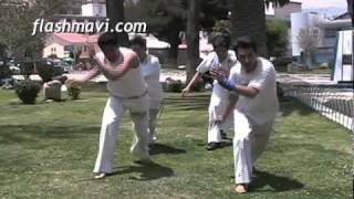 Capoeira Balanca 2