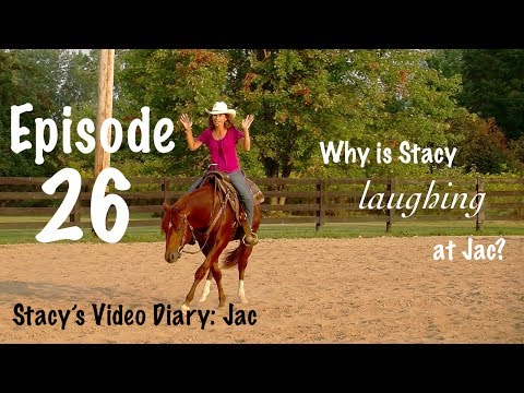 Stacy's Video Diary:Jac- Episode 26-Horse training is a conversation between horse and human