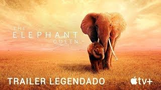 A Rainha Elefanta • Trailer Legendado