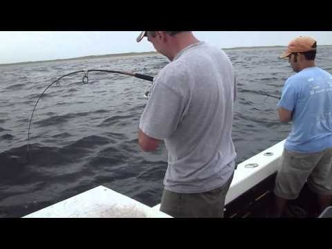 Cape Cod Deep Sea Fishing Best of 2011