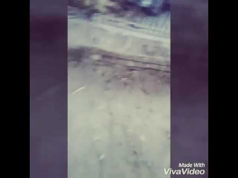funny video #Egg rape 18+ only 😂😂 thumbnail