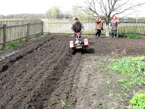 Самодельный капельный полив для картофеля