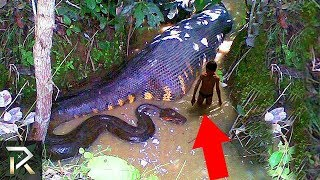 Mysterious Creatures People Spotted In The AMAZON