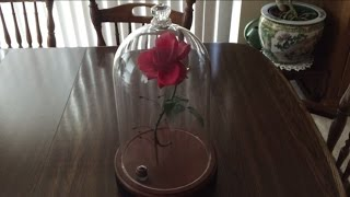 Beauty and the Beast Enchanted Rose Prop with Falling Petals and Lights
