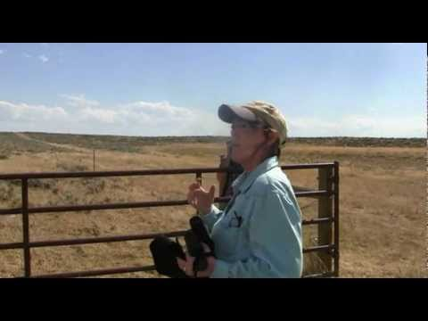 Coal bed methane in the Powder River Basin, Wyoming