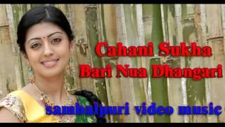 Chani sukha | SAMBALPURI MUSIC VIDEO 2015