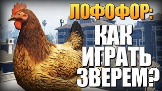 GTA 5 - Как Играть за Животных? (Лофофоры) #2