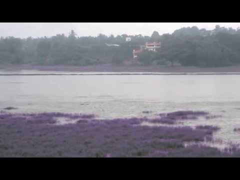 Carambolim Lake by Goa Tourism Travels