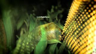 Shlohmo - Places (Late Night Tales: Bonobo)