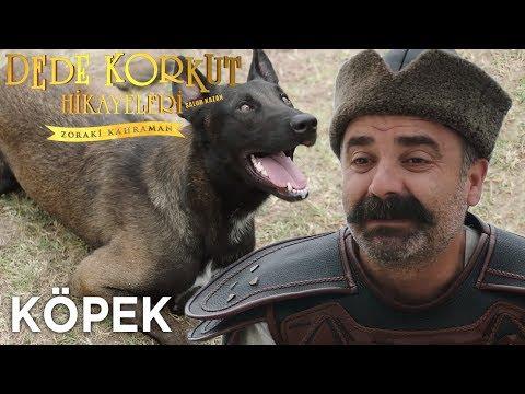 Salur Kazan: Zoraki Kahraman vs Köpek - Dede Korkut Hikayeleri