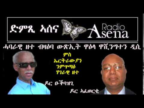 Voice of Assenna: Panel Discussion on the Outcome of DC Conference by EFND 10 11 2014