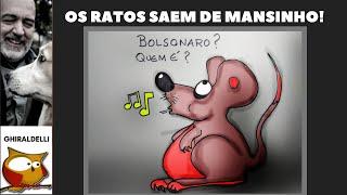 OS RATOS SAEM DE MANSINHO!