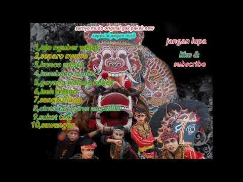 Pegon Satrio Mudo Original Mp3,penak Gawe Jingkrak,mantap Tabuhane