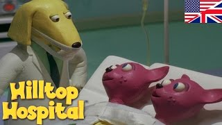 Hilltop Hospital -  Siamese Twins S04E11 HD | Cartoon for kids