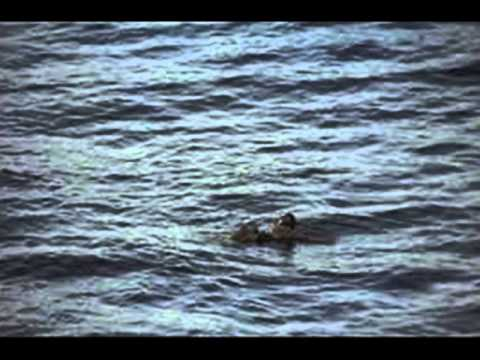 El Cristo del Oceano 1