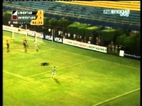 Nelinho Quina - J.D Pinieri: FIFA Player's Agent - Representante de Nelinho Quina