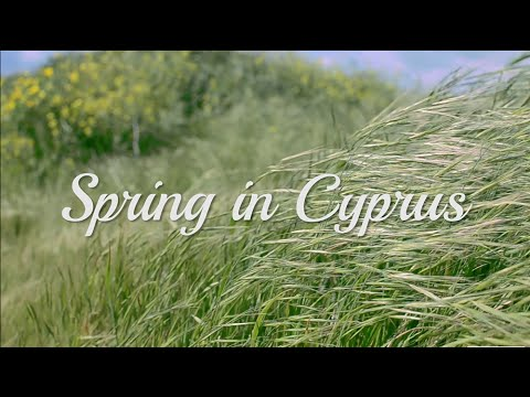 Spring in Cyprus - 2015