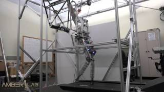 Bipedal Robotic Running on DURUS-2D
