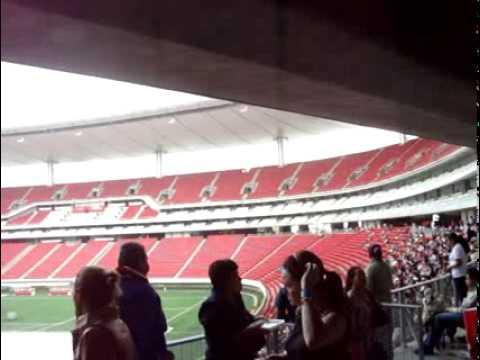 Estadio Omnilife Vacio Interior Del Estadio Omnilife