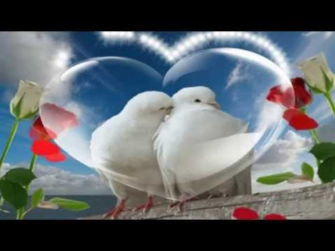 download lagu Wali Band ~  Jamin Rasaku gratis
