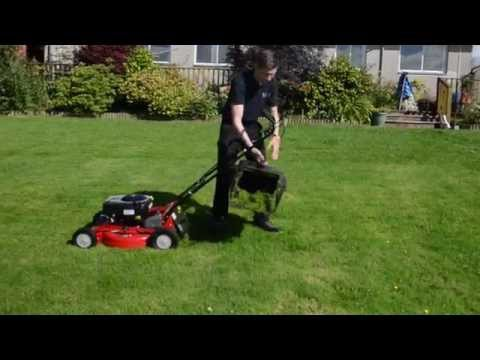 Rover Pro Cut 560 Self Propelled Petrol Lawnmower Briggs & Stratton Engine Large Grass Mower Catcher