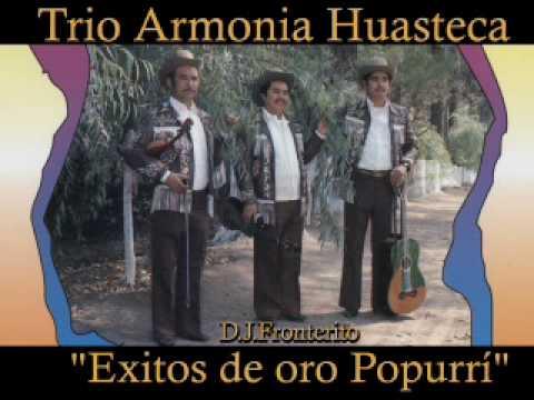 Trio Armonia Huasteca - Exitos de Oro (Popurrí)