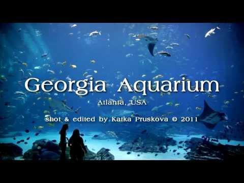 Georgia Aquarium - Ocean Voyager Tank (HD)