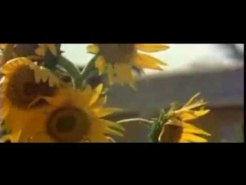 Lata Mangeshkar Bengali Song Ei Janame Amra Achi Mahua Roy Chowdhury Prasenjit Debashree Roy video
