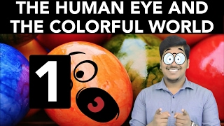 Physics: The Human Eye and the Colorful World (Part 1)