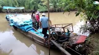 Đi chợ Bến Tre bằng đường sông - Hương vị đồng quê - Bến Tre - Miền Tây