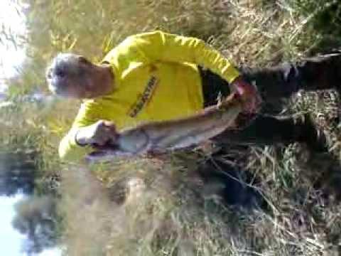 рыбалка на паук в казахстане