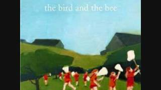 Watch Bird  The Bee Because video
