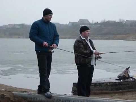 рыбалка шебекино