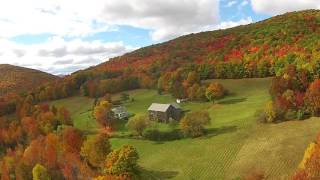 Fall foliage in the Catskills