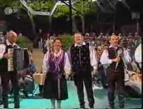 Alpenoberkrainer - Hit-Medley