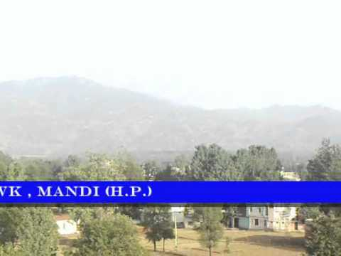 Soail Himachali  song gipsnerchowk  Mandi Hindi  India1 video