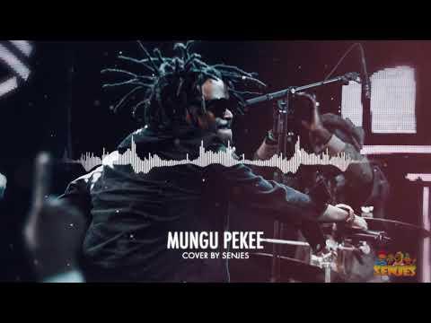 Mungu Pekee Nyashinski // Senjes Reggae Cover