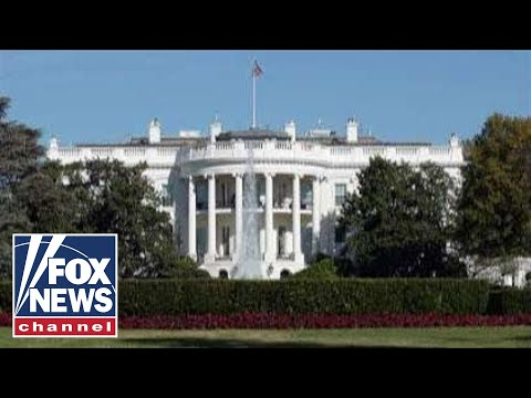 Swamp Watch: The swamp in the White House