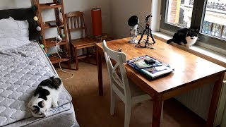 Help Me Organise My Bedroom ?? ASMR HOUSE TOUR