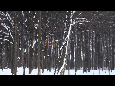 Lady of Winter (letras)