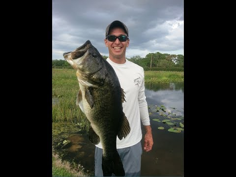 Sarasota Florida Bass Fishing